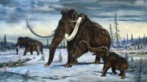 ¿Es posible revivir especies extintas?