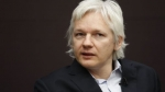 Reino Unido, Suecia, Wikileaks