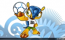 , Brasil 2014, Fuleco