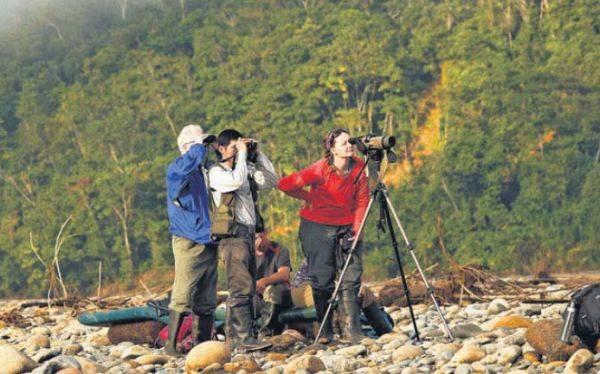 Perú: Mejor destino del mundo para la observación de aves