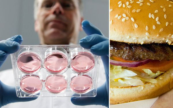 La hamburguesa de laboratorio cuya creación costó US$325.000